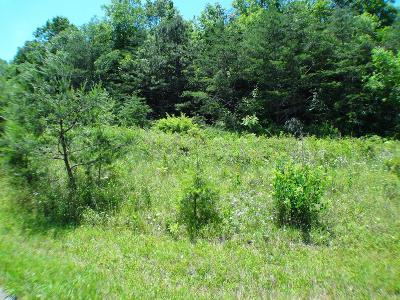 Franklin, Otto Residential Lots & Land For Sale: Lot 4 Preserve Road