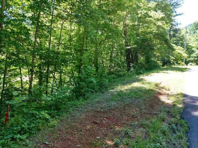 Franklin, Otto Residential Lots & Land For Sale: Lot 4 Trimont Lake Estates Rd