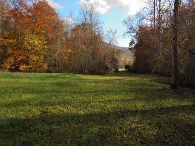Franklin, Otto Residential Lots & Land For Sale: 1310 Wayah Road