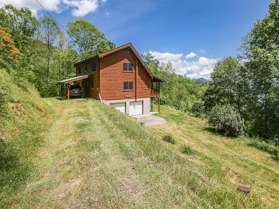 Sylva Single Family Home For Sale: 4390 Parris Branch