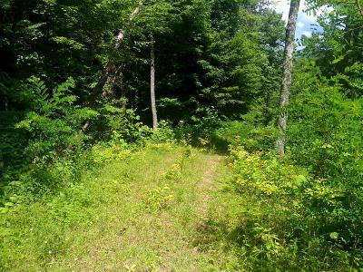 Franklin, Otto Residential Lots & Land For Sale: 00 Gibson Rd