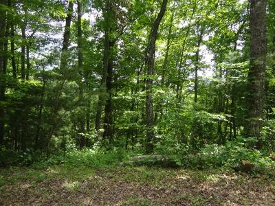 Macon County Residential Lots & Land For Sale: 00 Carolina Crest Drive