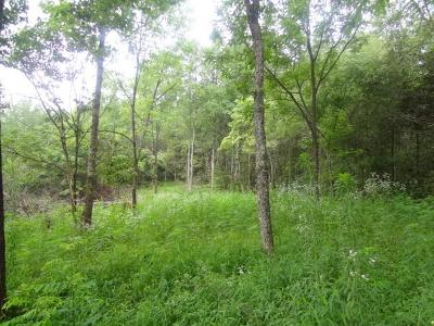 Residential Lots & Land Sold: Lot # 3a Wild Pear Lane