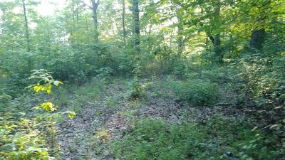 Indian Hills Residential Lots & Land For Sale: 00 Maxwell Home Rd