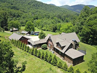 Jackson County Single Family Home For Sale: 109 Flat Gap Trail
