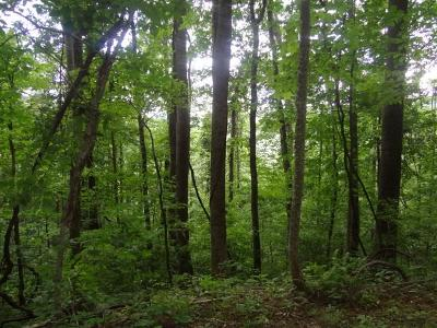 Macon County Residential Lots & Land For Sale: 00 Cardinal Lane