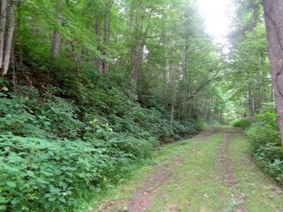 Macon County Residential Lots & Land For Sale: Lt 43/44 Whisper Mountain Road