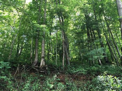 Franklin, Otto Residential Lots & Land For Sale: 00 Buck Creek Road