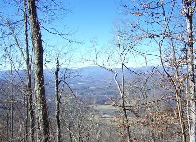 Franklin, Otto Residential Lots & Land For Sale: 00 Hemlock Falls Rd