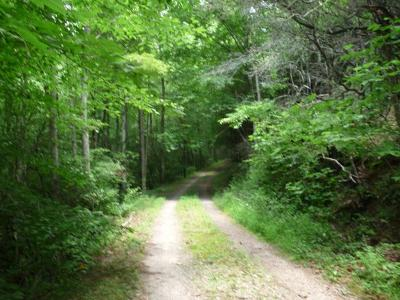 Franklin, Otto Residential Lots & Land For Sale: 00 Dobson Mountain Rd