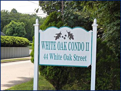 Macon County Single Family Home For Sale: 44 White Oak St. #2