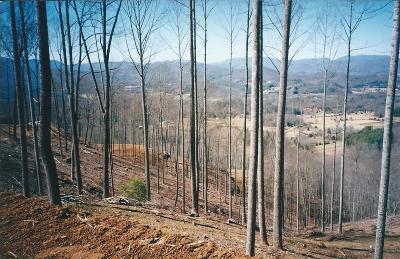 Franklin, Otto Residential Lots & Land For Sale: 00 Fulcher Vistas