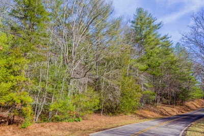 Franklin, Otto Residential Lots & Land For Sale: 00 John Teague Rd