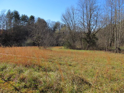 Franklin, Otto Residential Lots & Land For Sale: 00 Kivi Road