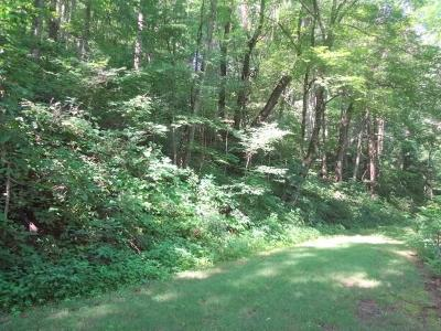 Macon County Residential Lots & Land For Sale: Lot 27 Whisper Mountain Road
