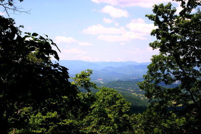 Franklin, Otto Residential Lots & Land For Sale: Lot 1 Bears Paw Trail