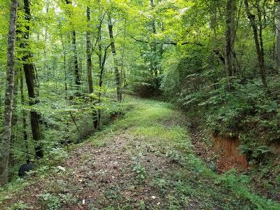 Macon County Residential Lots & Land For Sale: Lot 11 Meadow Mountain Estates Road