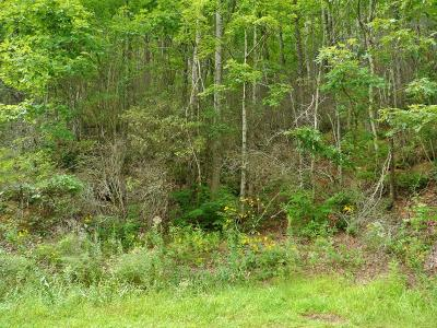 Residential Lots & Land For Sale: 00 Mountain Laurel Drive