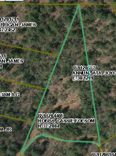 Macon County Residential Lots & Land For Sale: 000 Laurel Mountain Road