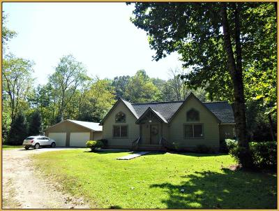Single Family Home For Sale: 4445 Patton Rd.