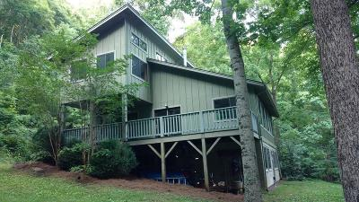 Jackson County Single Family Home For Sale: 341 Raider Mountain Rd