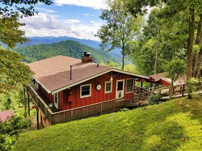 Macon County Single Family Home For Sale: 576 Flowers Gap Road