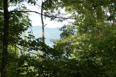 Franklin, Otto Residential Lots & Land For Sale: Pc 8359 Shady Knoll Dr