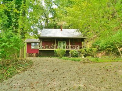 Otto Single Family Home For Sale: 609 Summit Road