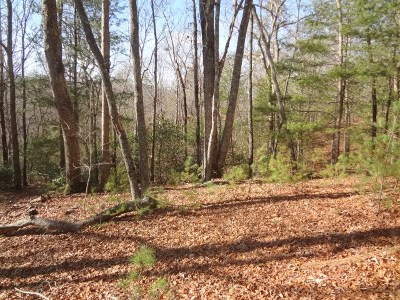 Macon County Residential Lots & Land For Sale: 00 Quail Ridge Trail