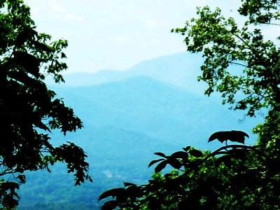 Watauga Vista Residential Lots & Land For Sale: 00 Possum Trot Trail