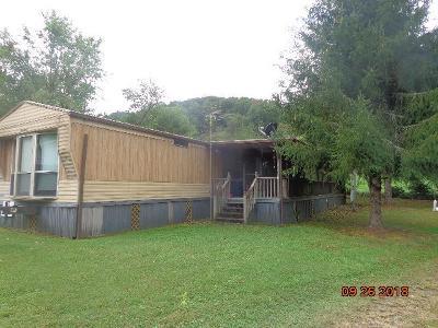 Sylva Single Family Home For Sale: 96 Jaderian Mountain Rd