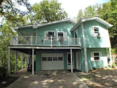 Single Family Home For Sale: 421 Noah Gibson Road