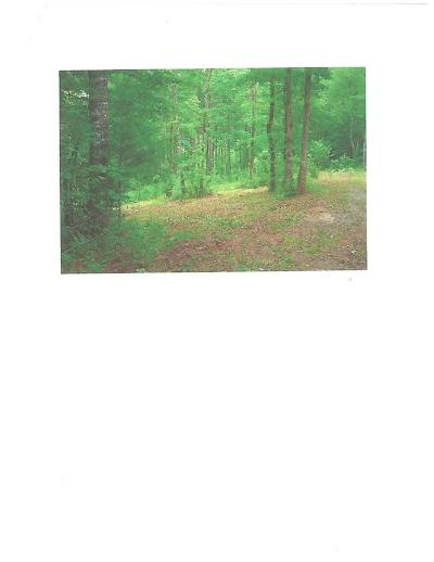 Franklin, Otto Residential Lots & Land For Sale: 00 Sugar Creek Off Younce Creek Road