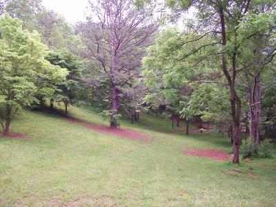 Franklin, Otto Residential Lots & Land For Sale: 000 Millbrook Heights