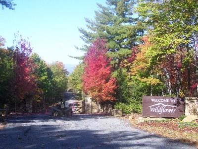 Franklin, Otto Residential Lots & Land For Sale: 00 Lyle Mountain Trail
