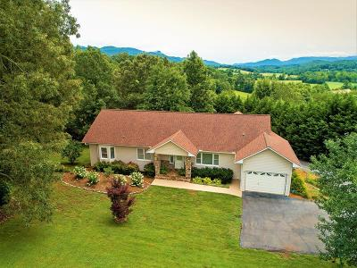 Franklin NC Single Family Home For Sale: $389,000