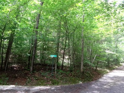 Franklin Residential Lots & Land For Sale: 00 Waterfall Lane