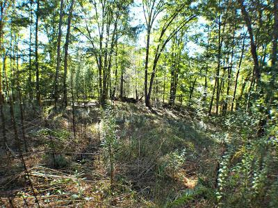 Franklin, Otto Residential Lots & Land For Sale: 367 Millbrook Cove Road