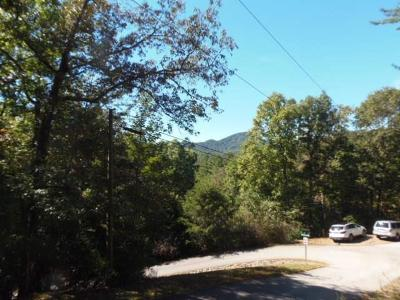 Franklin, Otto Residential Lots & Land For Sale: 00 Laurel Dr