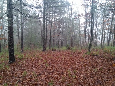 Residential Lots & Land For Sale: 11 Big River Drive