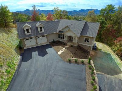 Sylva Single Family Home For Sale: 120 Hollywalk Trail