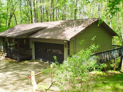 Single Family Home For Sale: 373 Cannon Trail