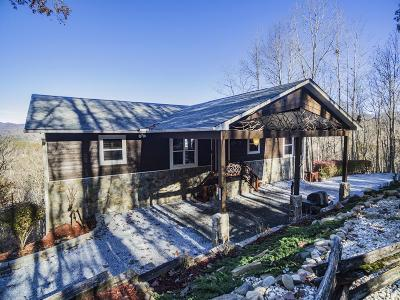 Single Family Home For Sale: 222 Mountain Circle