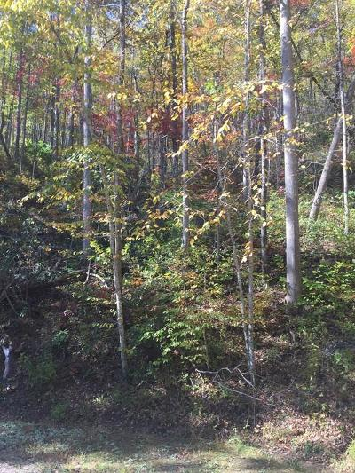 Watauga Vista Residential Lots & Land For Sale: 00 Waterfall Drive