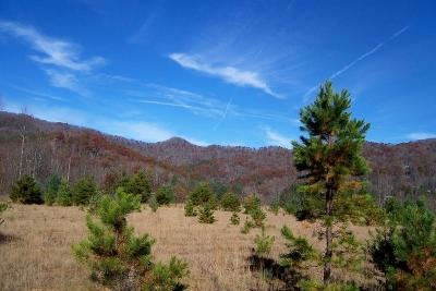 Franklin, Otto Residential Lots & Land For Sale: 00 Oak Creek Rd