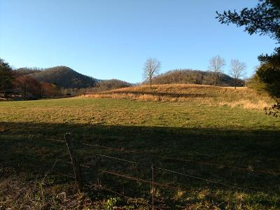 Franklin, Otto Residential Lots & Land For Sale: Rd 1372 Burningtown