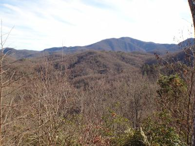 Franklin, Otto Residential Lots & Land For Sale: Lot 186 Anderson Creek Rd