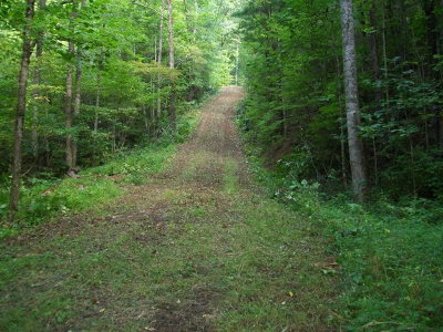 Franklin, Otto Residential Lots & Land For Sale: 3976 Tessentee Rd