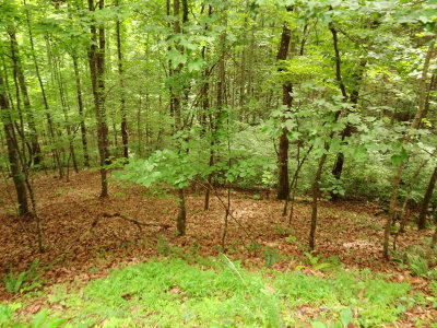 Franklin Residential Lots & Land For Sale: 00 Deerwood Drive