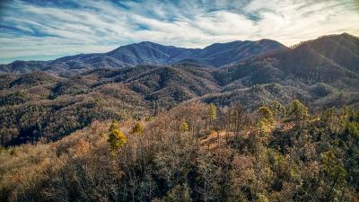 Franklin, Otto Residential Lots & Land For Sale: 106 Golden Falls Dr
